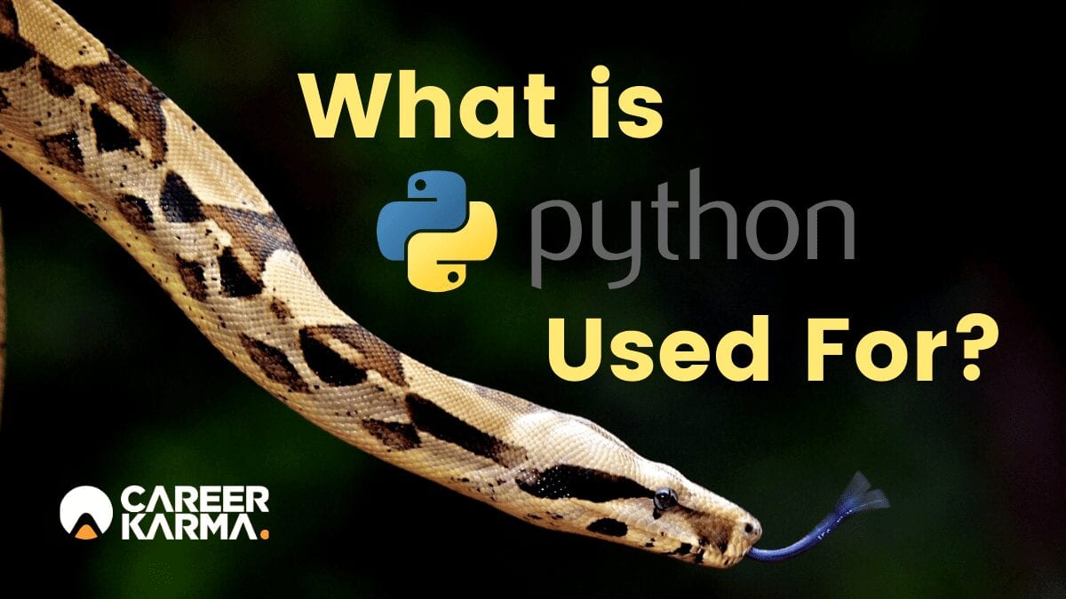 Why I'm Learning to Write Python
