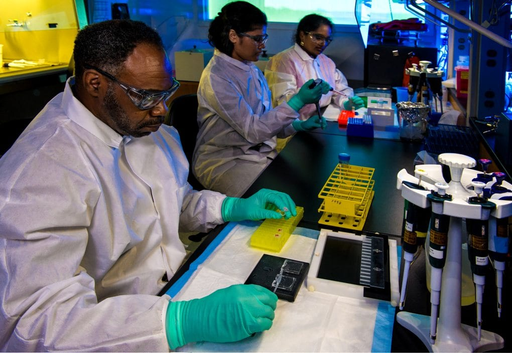 public health scientist looking at lab results