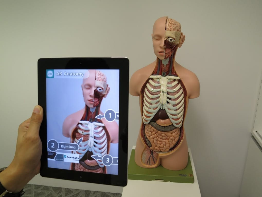 A smart tablet's camera points at an anatomical model of a human head and torso, as the tablet screen displays an image of the model with AR labels added.